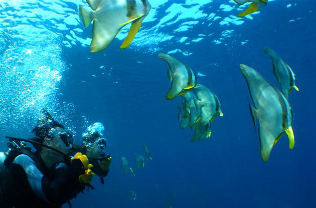 青の洞窟体験ダイビング 2