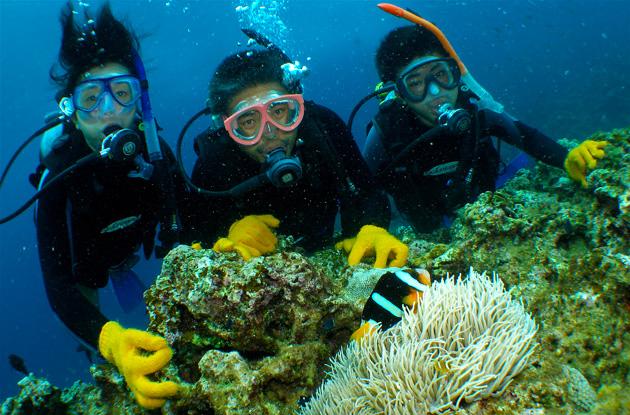 青の洞窟体験ダイビング 3
