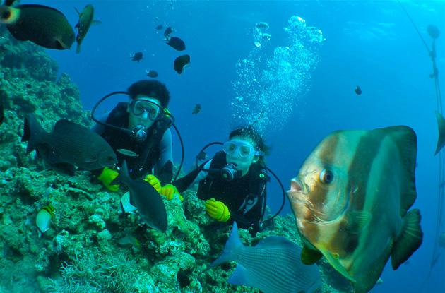 青の洞窟体験ダイビング 8