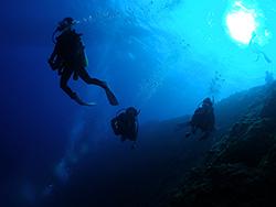 青の洞窟体験ダイビング イメージ