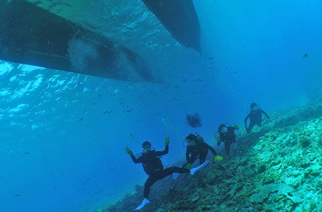 チービシ体験ダイビング 4