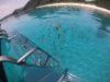これ以上ないダイビング日和、慶良間体験ダイビング、宜野湾、浦添ファンダイビング