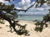 のんびり休憩のまったりファンダイビングfrom平安座島