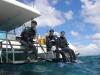 透明度抜群チービシ体験ダイビング