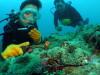 慶良間改めビーチ体験ダイビングx2