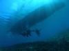 余裕のチービシ体験ダイビング