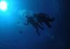 チービシ体験ダイビング2回転