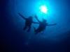 GWの始まりは慶良間体験ダイビング