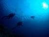 カメと太陽と私inチービシで体験ダイビング