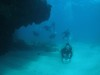 うねりの中チービシ体験ダイビング