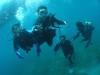 宜野湾、浦添で体験ダイビング