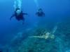 4人でワイワイ慶良間体験ダイビング&同行ダイビング