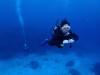 慶良間体験ダイビング改めチービシ体験ダイビング