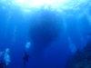 慶良間体験ダイビング&粟国島ファンダイビング