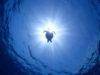 カメ三昧の3本目、慶良間体験ダイビング