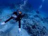 イントラ同期からのご紹介でチービシ体験ダイビング