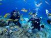 チービシ体験ダイビングのち宜野湾ファンダイビングde海底泡盛引き上げ