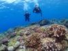 みんなが想像するthe沖縄の海inチービシ