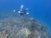 今日のメニューは2本立てPADIライセンス講習OWコース&チービシ体験ダイビング