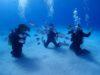 太陽キラキラ慶良間体験ダイビング