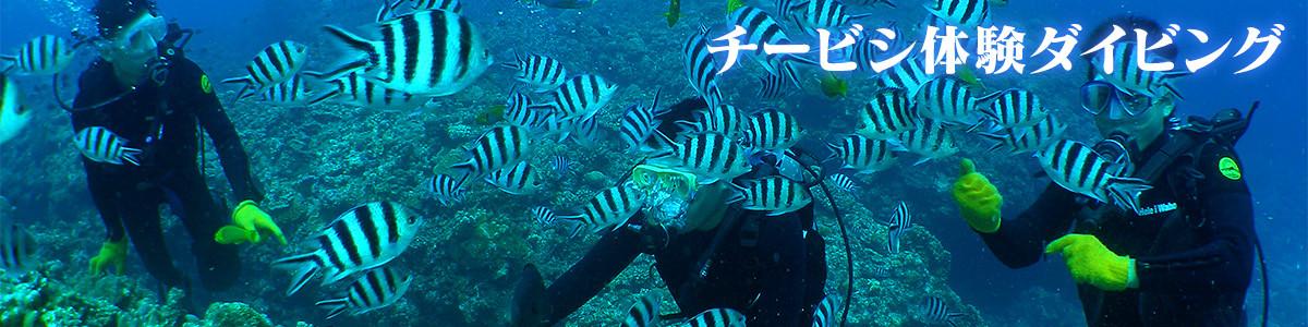 那覇から30分、チービシ諸島で体験ダイビング