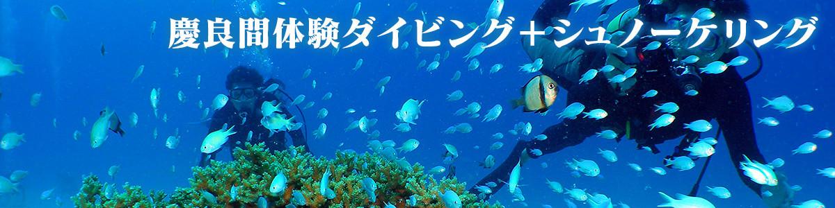 沖縄 ケラマブルーの海で体験ダイビング
